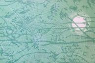 Spider Moon RDCB cover - Artist Emily Shane