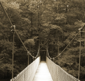 """Swinging Bridge"" by Emily Shane"