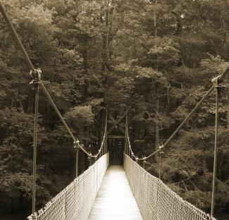 """""""Swinging Bridge"""" by Emily Shane"""